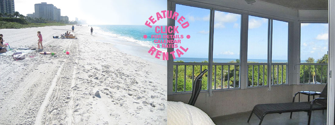 BEACH CONDO RENTAL IN NAPLES FLORIDA